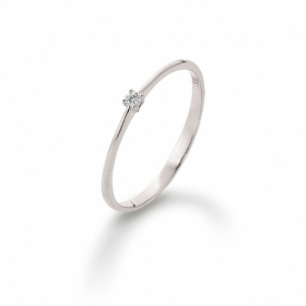 Ring · K11231